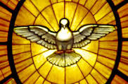 Holy Spirit Dove Stained Glass